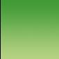 Ico-Star